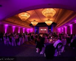 wedding DJ london LED uplighting mood lighting